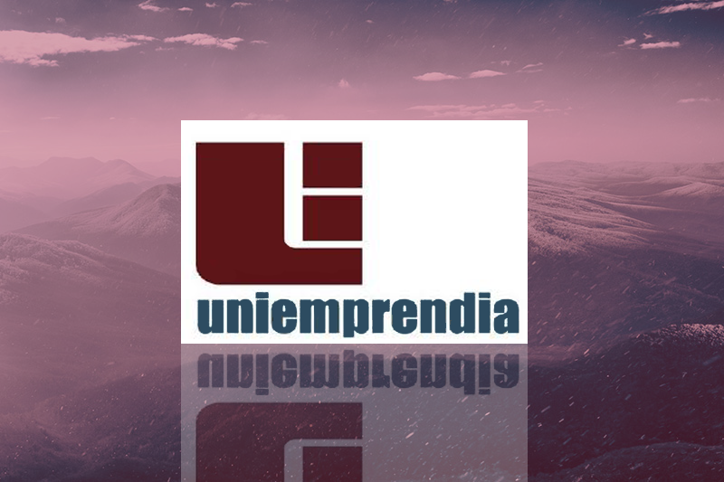 2008 - Uniemprendia award by University Council